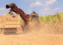 Brésil : un plan ambitieux pour les biocarburants. ©Naypong/Fotolia