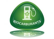 Bioéthanol : la France, leader européen de la production. © Pro web design/Fotolia