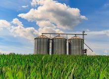 Nouvelle campagne :« Ne pas vendre son blé avant de l'avoir récolté ». ©Kläuschen/Fotolia