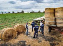 La gendarmerie effectue des consultations préventives pour limiter les actes de délinquances dans les exploitations