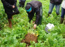 Nicolas Courtois d'AgriVulg Genève en Suisse explique au lycée agricole de Rouillon dans la Sarthe comment réaliser un test Vess pour analyser les diverses strates de son sol.