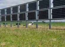 Les panneaux photovoltaïques verticaux proposés par la société Next2Sun vont être distribués en France exclusivement par Total Quadran. Crédit : Next2Sun