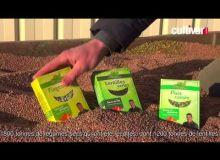 Monter une filière légumes secs