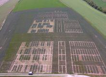Photo aérienne d'une parcelle agricole qui comprend de microparcelles d'essai de la société Agri-Conseil dont certaines modalités comprennent des huiles essentielles. Crédit photo : Agri-Conseil