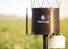 Désormais certifié Mileos®, Sencrop rend possible, pour toutes les exploitations, la prévention du mildiou à l'échelle ultra-locale de la parcelle. © Sencrop