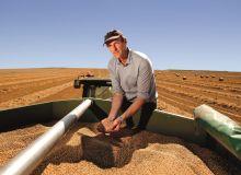 Augmenter  la teneur en protéines des blés. © Yara