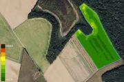 Image satelitaire Sentinel de la parcelle Les Patis du 28/03/2021