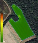 Carte de biomasse de la parcelle Les Patis au début du mois de mai 2021