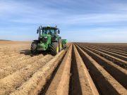 Plantation de pommes de terre dans des buttes pré-formées à l'été précédent. Crédit Photo : Fabien Monte