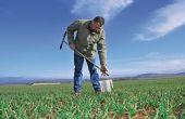 Quantifier les éléments présents dans le sol est possible grâce aux reliquats d'azote.©L. Theeten / Pixel Image