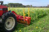 La date de destruction du couvert végétal ne doit être trop tardive pour les culture de printemps, au risque d'amputer le potentiel de la culture. Photo : Pixel6TM