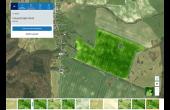 Carte de la biomasse actuelle et historique générée dans l'application Atfarm créée par Yara Digital Farming