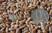 L'idée d'un cartel des pays producteurs de blé ressurgit