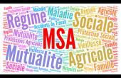 MSA : « Une gestion insuffisamment performante », selon la Cour des comptes. ©Ricochet64/AdobeStock