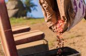 Une offre de semences de maïs insuffisante face à la demande. ©Antonello/Adobe Stock