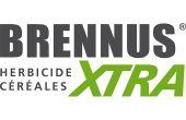 Brennus® Xtra, nouvel anti-dicot céréales.