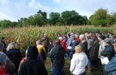 Près de cent personnes étaient présentes sur la plateforme d'expérimentation de variétés populations en maïs et tournesol, au Change en Dordogne, le 14 septembre. Photo O.Lévêque/Pixel Image