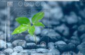 Suzanne Barratt, ESA :« Nous devons tenir compte de l'aspect émotionnel lié à l'innovation végétale »© Coffeekai/Fotolia