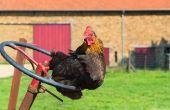 43% des exploitations agricoles valorisent 73% des surfaces. © Ivonne Wierink/Fotolia