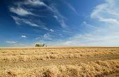 Dans leur dernière édition de leurs perspectives à 10 ans, l'OCDE et la FAO estiment que la période de prix élevés des matières agricoles de base est certainement dernière nous.