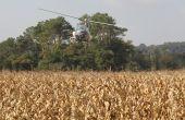 semis de couvert végétal par hélicoptère dans un maïs (photo Euralis)