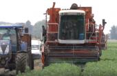 sillon d'avenir: notaire et agriculteur, charles-Henri de Meersman fait les 2 métiers en parallèle
